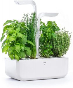 orto giardino idroponico interno